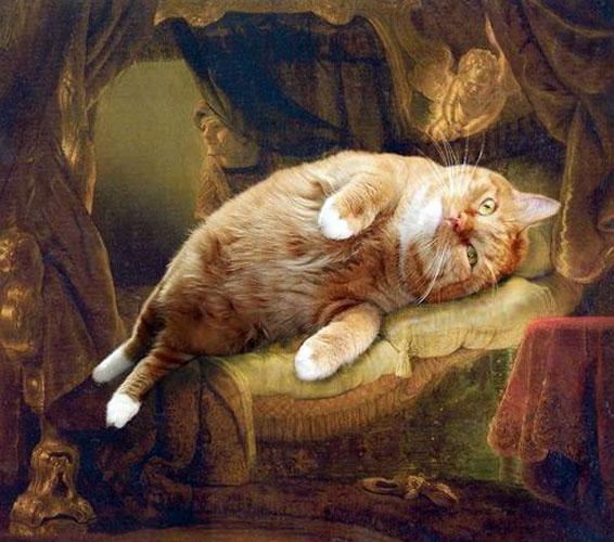 Картина кот фото